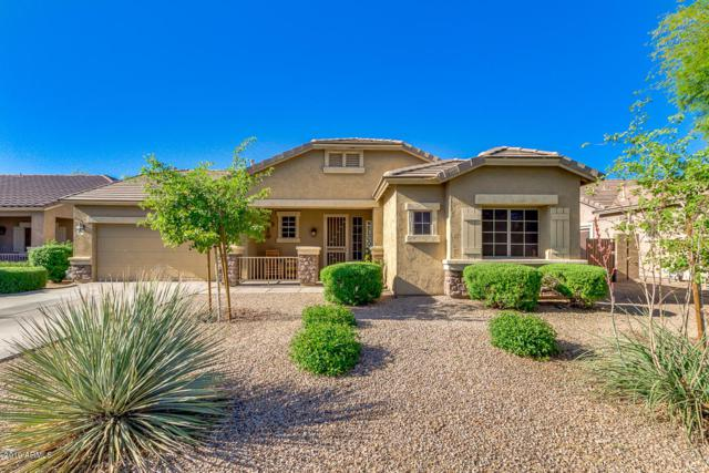 19926 E Thornton Road, Queen Creek, AZ 85142 (MLS #5915768) :: The C4 Group