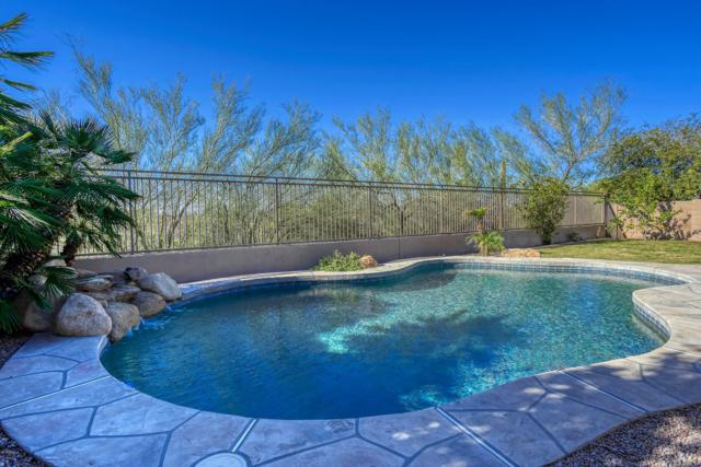 16614 N 104th Way, Scottsdale, AZ 85255 (MLS #5915823) :: The C4 Group