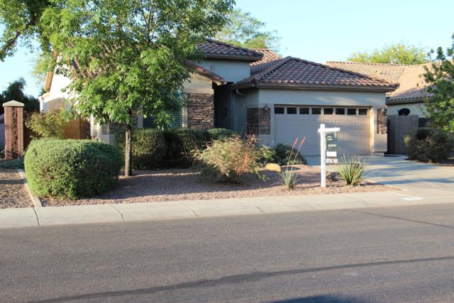 3105 E Merlot Street, Gilbert, AZ 85298 (MLS #5915855) :: Riddle Realty