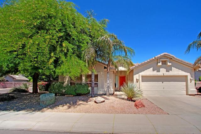 6024 E Danbury Road, Scottsdale, AZ 85254 (MLS #5915856) :: CC & Co. Real Estate Team
