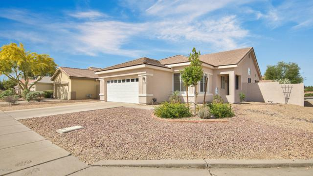 1810 S Gardner Drive, Chandler, AZ 85286 (MLS #5915872) :: The C4 Group