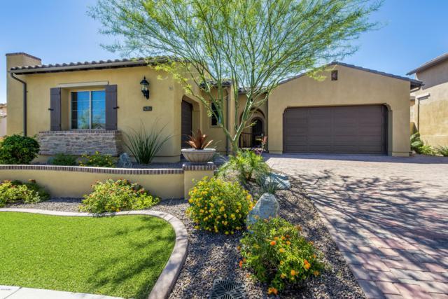 28449 N 68TH Avenue, Peoria, AZ 85383 (MLS #5915878) :: Occasio Realty