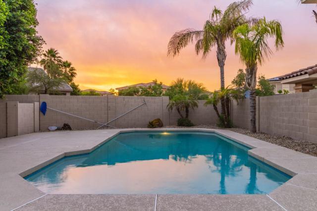 13532 W Alvarado Drive, Goodyear, AZ 85395 (MLS #5915892) :: Occasio Realty
