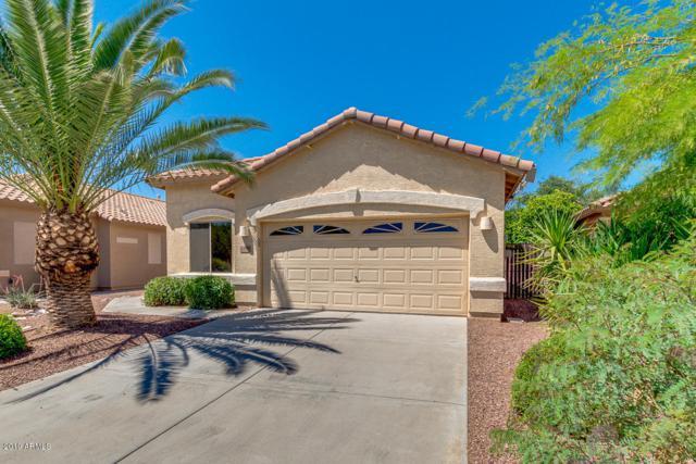 12608 W Bird Lane, Litchfield Park, AZ 85340 (MLS #5915894) :: Phoenix Property Group