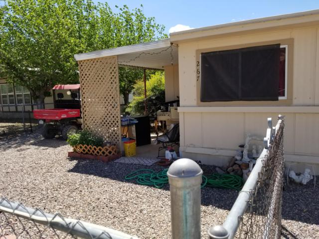 267 E Dove Drive, Roosevelt, AZ 85545 (MLS #5915900) :: Lucido Agency