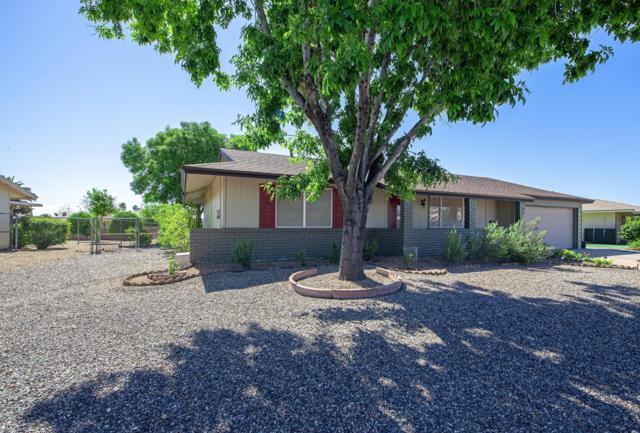 11174 W Cameo Drive, Sun City, AZ 85351 (MLS #5915913) :: Occasio Realty