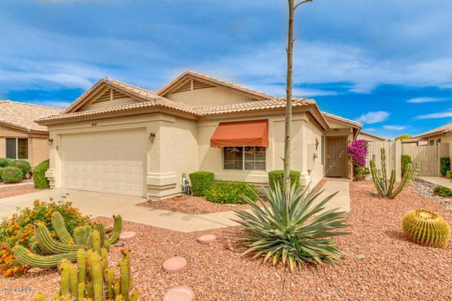 10636 W Runion Drive, Peoria, AZ 85382 (MLS #5915920) :: Occasio Realty