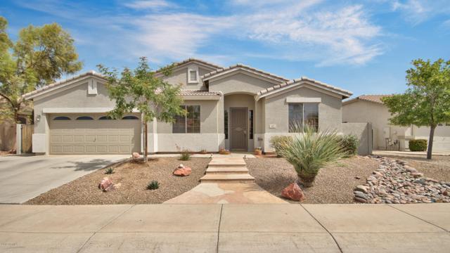 42 W Cedar Drive, Chandler, AZ 85248 (MLS #5915959) :: Occasio Realty