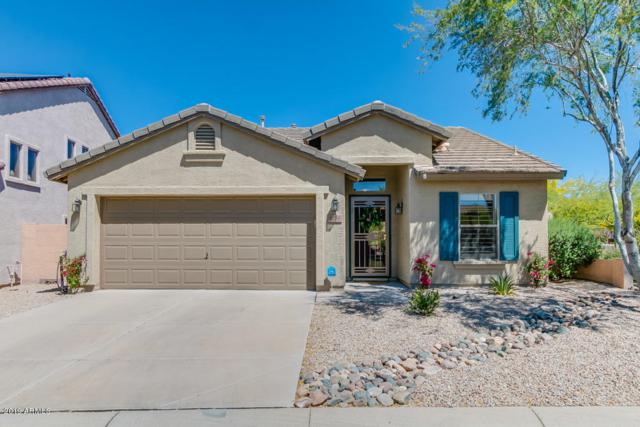 4738 E Woburn Lane, Cave Creek, AZ 85331 (MLS #5915960) :: Occasio Realty