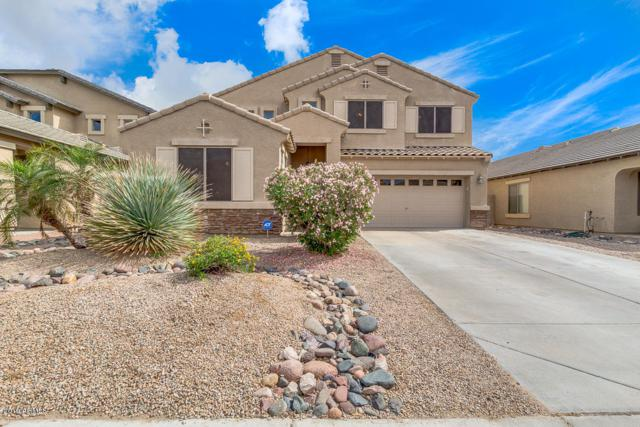 16215 W Williams Street, Goodyear, AZ 85338 (MLS #5915968) :: Phoenix Property Group