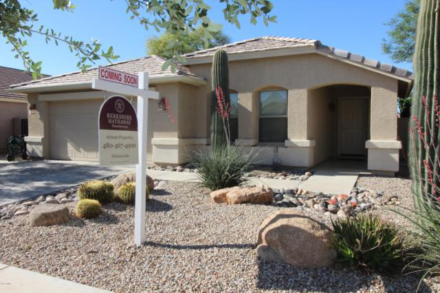 21295 E Via Del Palo, Queen Creek, AZ 85142 (MLS #5915970) :: The C4 Group