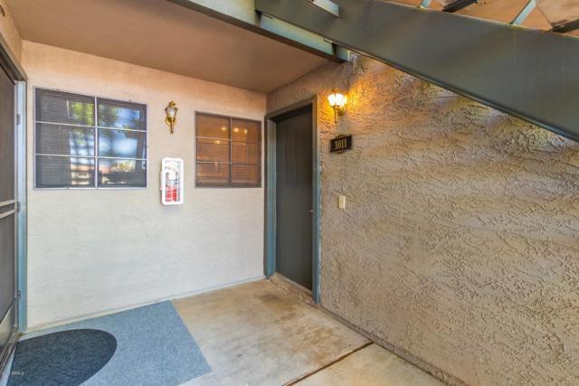 533 W Guadalupe Road #1011, Mesa, AZ 85210 (MLS #5915973) :: The Daniel Montez Real Estate Group