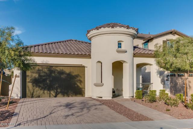 20586 W Nelson Place, Buckeye, AZ 85396 (MLS #5915988) :: Realty Executives