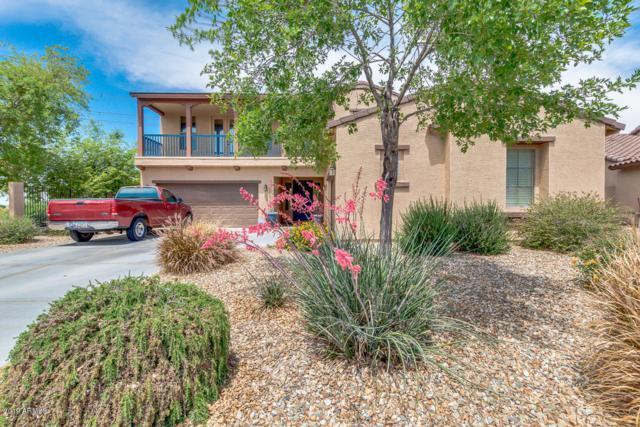 18036 W Lavender Lane, Goodyear, AZ 85338 (MLS #5916007) :: Phoenix Property Group