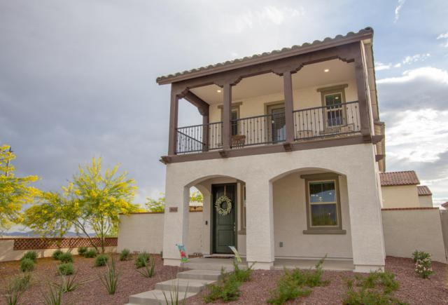 1614 N Marketside Avenue, Buckeye, AZ 85396 (MLS #5916011) :: Phoenix Property Group