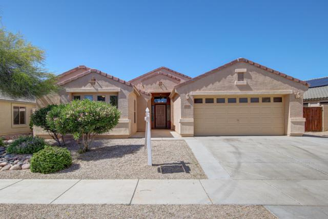 17775 W Eugene Terrace, Surprise, AZ 85388 (MLS #5916020) :: Devor Real Estate Associates