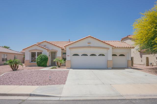 8388 N 97TH Avenue, Peoria, AZ 85345 (MLS #5916091) :: The Results Group