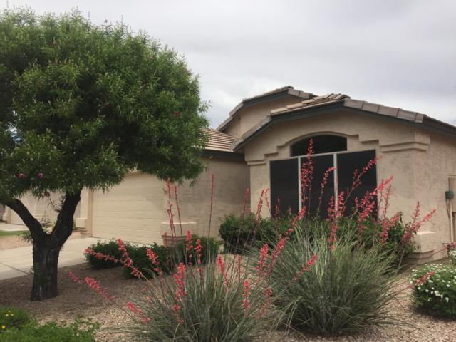 4330 E Abraham Lane, Phoenix, AZ 85050 (MLS #5916103) :: Arizona 1 Real Estate Team