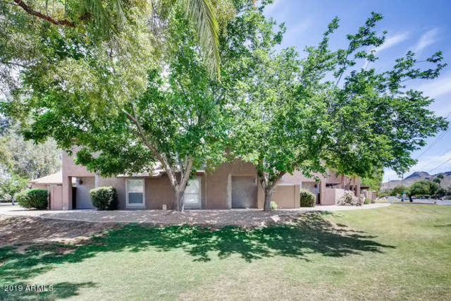 202 E Betty Elyse Lane, Phoenix, AZ 85022 (MLS #5916177) :: Yost Realty Group at RE/MAX Casa Grande