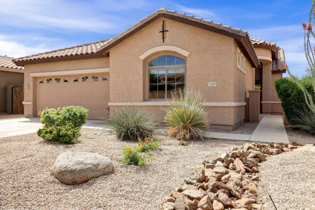 17660 W Buckhorn Drive, Goodyear, AZ 85338 (MLS #5916178) :: Occasio Realty