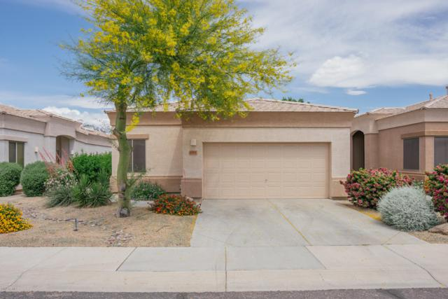 6384 W Pontiac Drive, Glendale, AZ 85308 (MLS #5916223) :: The Results Group
