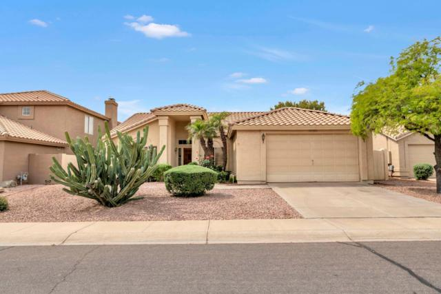 5963 W Gail Drive, Chandler, AZ 85226 (MLS #5916259) :: Relevate | Phoenix
