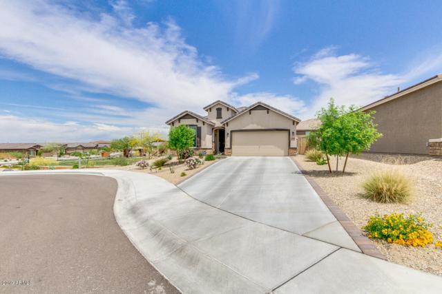 17438 W Eagle Court, Goodyear, AZ 85338 (MLS #5916268) :: Occasio Realty