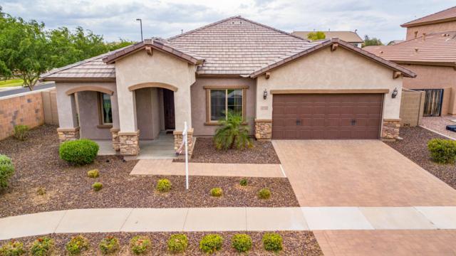 3063 E Baars Avenue, Gilbert, AZ 85297 (MLS #5916274) :: Riddle Realty