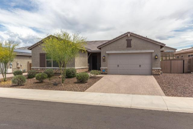 25981 N 96TH Lane, Peoria, AZ 85383 (MLS #5916298) :: The Results Group