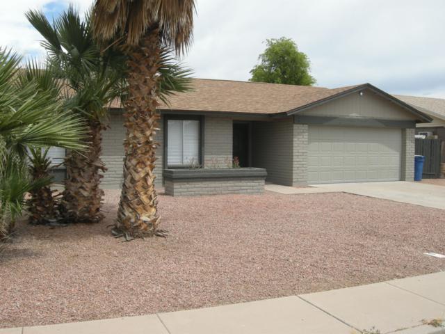 1909 N Bullmoose Drive, Chandler, AZ 85224 (MLS #5916304) :: The Kenny Klaus Team