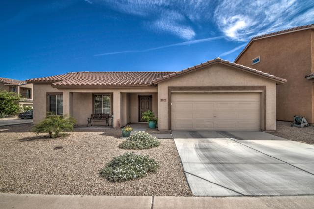 2327 E 25th Avenue, Apache Junction, AZ 85119 (MLS #5916336) :: Yost Realty Group at RE/MAX Casa Grande