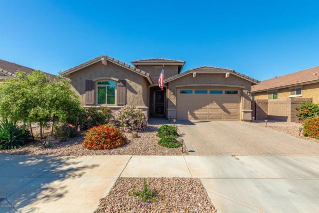 20678 E Mockingbird Drive, Queen Creek, AZ 85142 (MLS #5916357) :: The Kenny Klaus Team