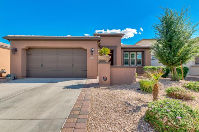 1421 E Elysian Pass, San Tan Valley, AZ 85140 (MLS #5916366) :: Yost Realty Group at RE/MAX Casa Grande