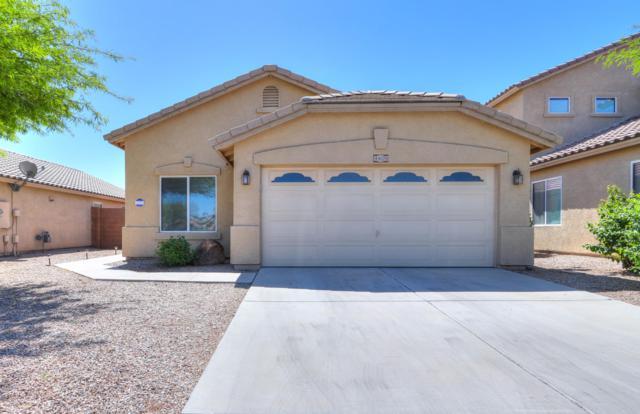 44129 W Oster Drive, Maricopa, AZ 85138 (MLS #5916368) :: RE/MAX Excalibur