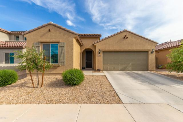 17858 W Hadley Street, Goodyear, AZ 85338 (MLS #5916382) :: Riddle Realty