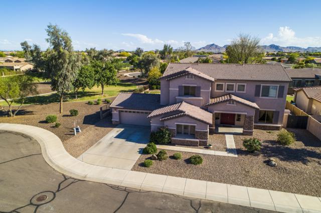 21137 E Twin Acres Drive, Queen Creek, AZ 85142 (MLS #5916389) :: The Kenny Klaus Team