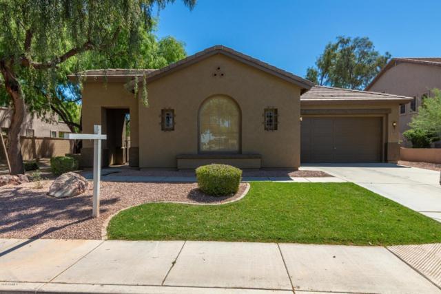 2641 S Dragoon Drive, Chandler, AZ 85286 (MLS #5916458) :: Riddle Realty