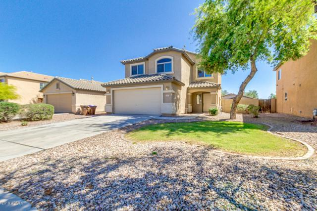 205 W Brangus Way, San Tan Valley, AZ 85143 (MLS #5916463) :: Riddle Realty