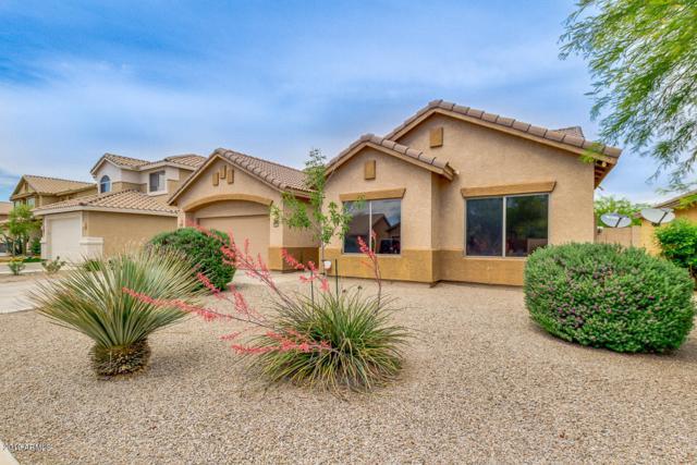 2614 W Darrel Road, Phoenix, AZ 85041 (MLS #5916495) :: CC & Co. Real Estate Team