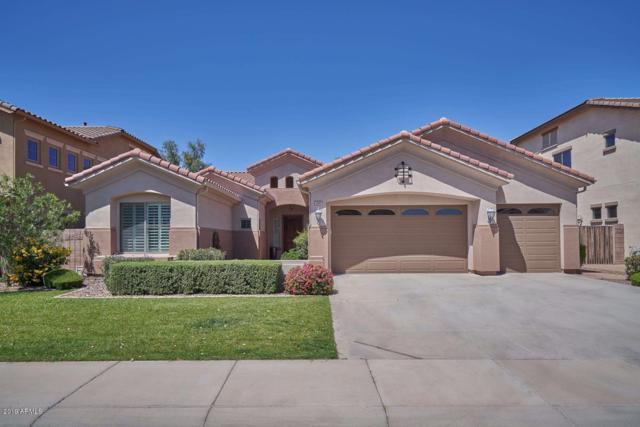 2466 E Ficus Way, Gilbert, AZ 85298 (MLS #5916508) :: Revelation Real Estate