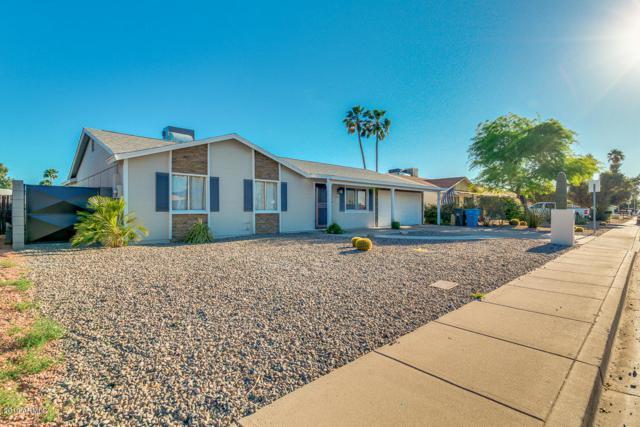 3825 E Nisbet Road, Phoenix, AZ 85032 (MLS #5916518) :: Riddle Realty