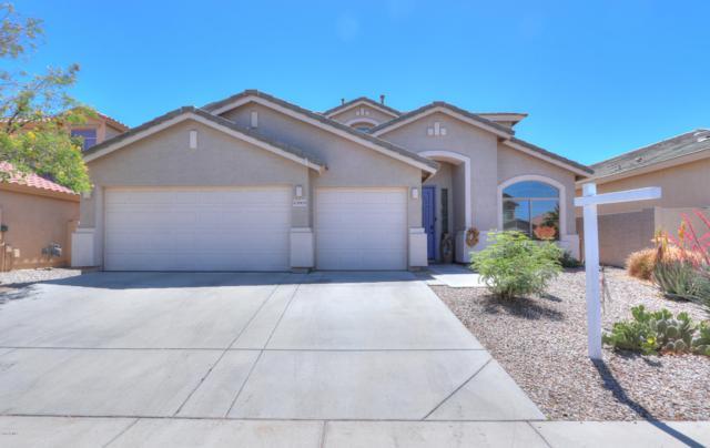 43909 W Knauss Drive, Maricopa, AZ 85138 (MLS #5916562) :: Santizo Realty Group