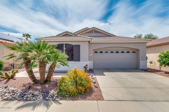 18063 W Udall Drive, Surprise, AZ 85374 (MLS #5916566) :: Santizo Realty Group