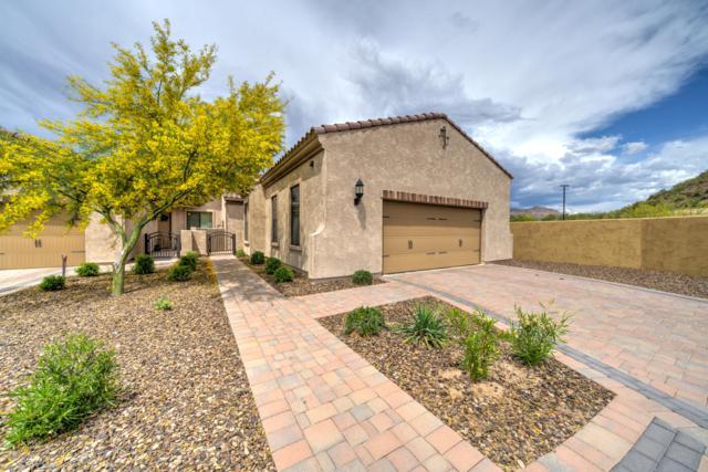 1856 N Red Cliff, Mesa, AZ 85207 (MLS #5916571) :: Santizo Realty Group