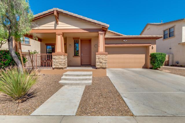 1476 W Pelican Court, Chandler, AZ 85286 (MLS #5916599) :: Arizona 1 Real Estate Team