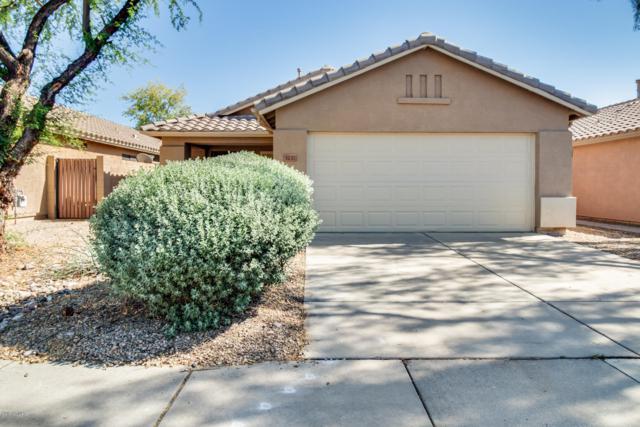 3237 E Tonopah Drive, Phoenix, AZ 85050 (MLS #5916611) :: CC & Co. Real Estate Team