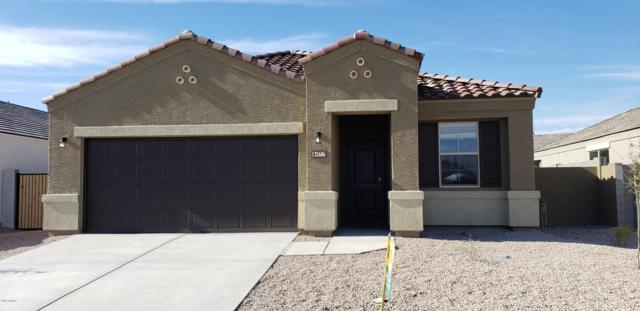 25653 W Winston Drive, Buckeye, AZ 85326 (MLS #5916641) :: The Kathem Martin Team