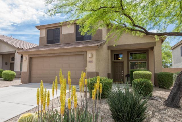 4607 E Laredo Lane, Cave Creek, AZ 85331 (MLS #5916676) :: The Kathem Martin Team
