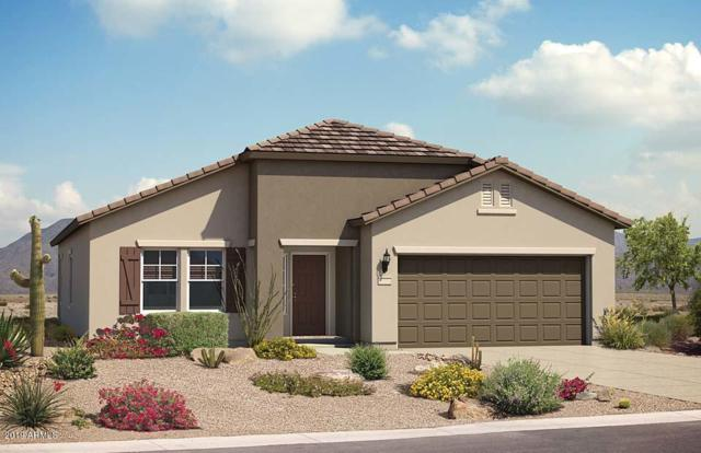 3698 N San Marin Drive, Florence, AZ 85132 (MLS #5916725) :: Yost Realty Group at RE/MAX Casa Grande