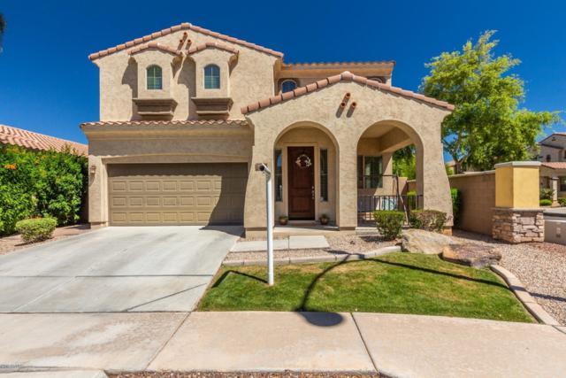 3560 E Constitution Drive, Gilbert, AZ 85296 (MLS #5916732) :: Yost Realty Group at RE/MAX Casa Grande